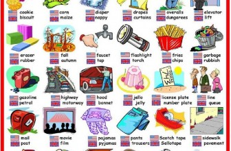 The Differences Between Indian & American Businesses